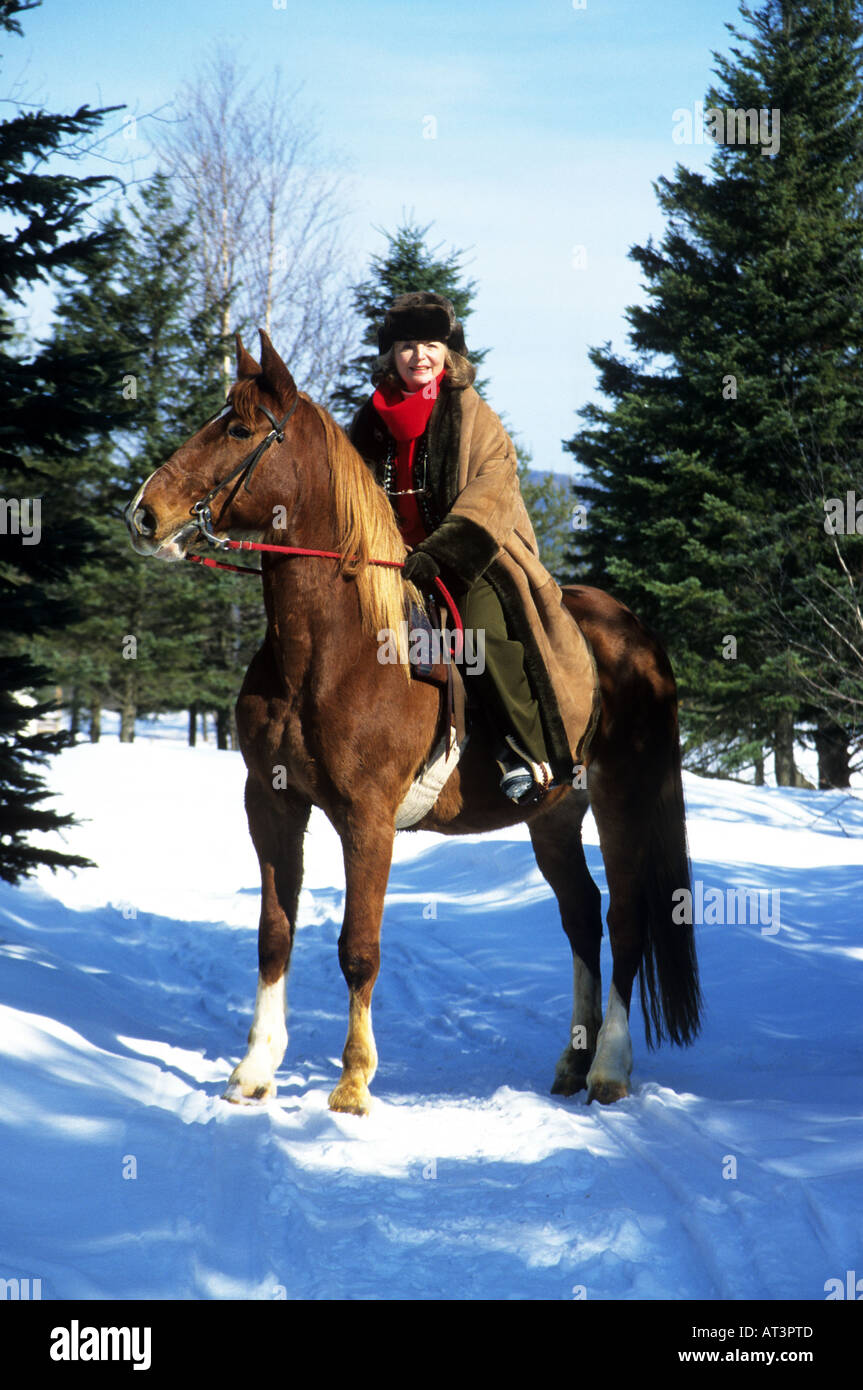 Woman tourist  in Quebec at Winter time horse riding in the snow. - Stock Image