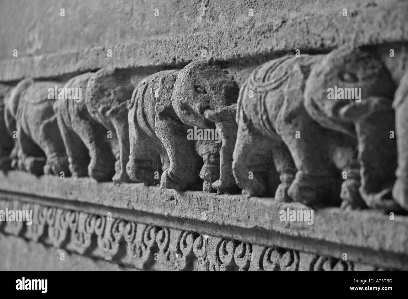 Wall Detail of Elephant at the Queen Rudabai's Stepwell Adalaj Ahmedabad Gujarat India - Stock Image