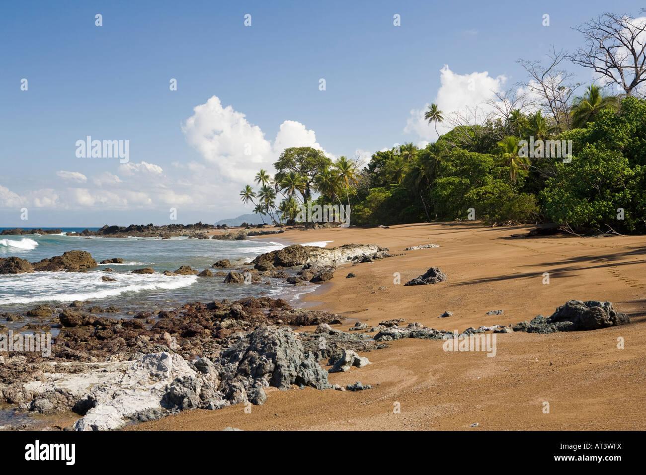 Costa Rica Osa Peninsula Playa Las Caletas - Stock Image