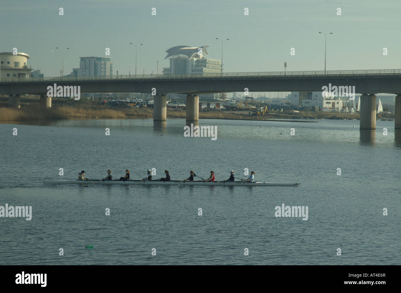 Coxed eights rowing on river - Stock Image