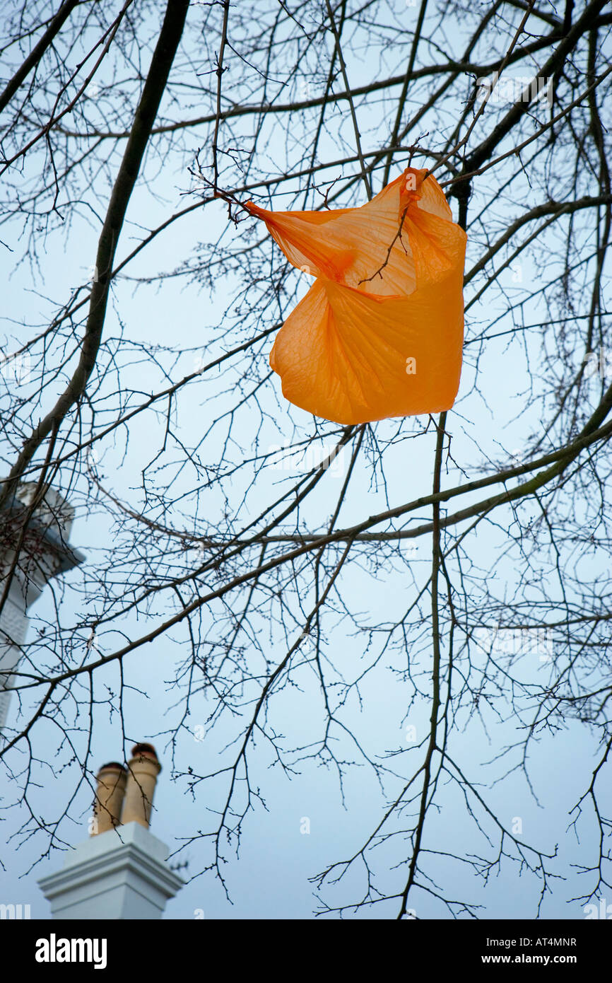Discarded plastic bag caught in the branches of a tree - Stock Image
