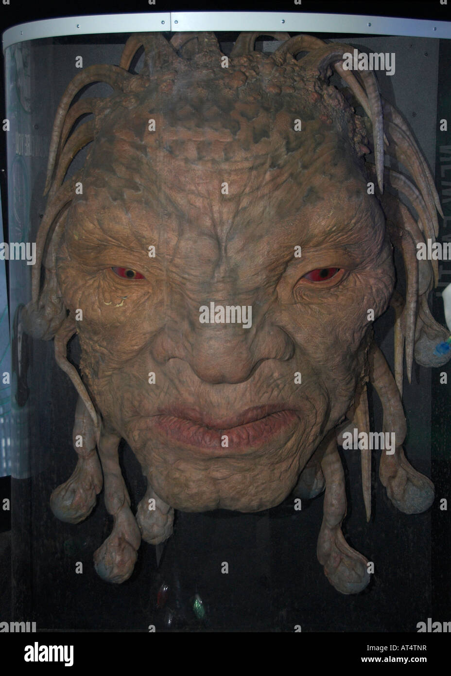 Face Of Bow at the Dr Who exhibition at Lands End Cornwall - Stock Image