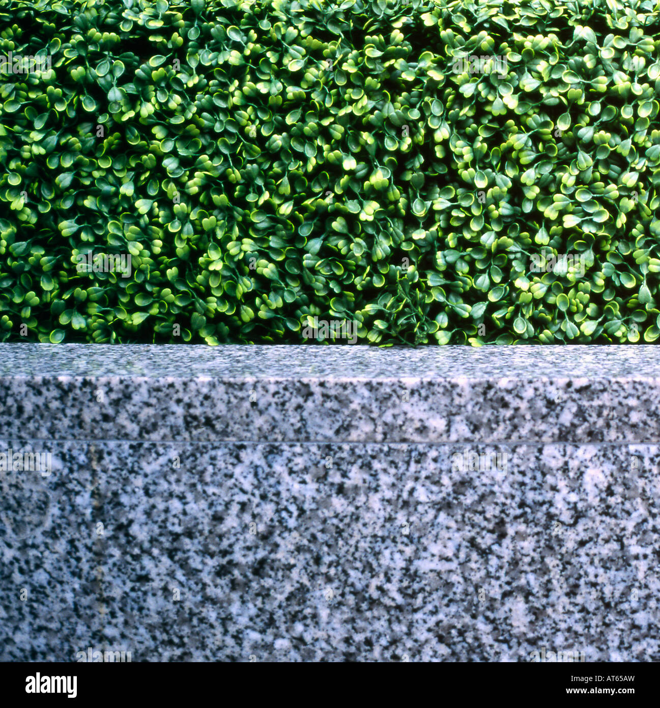 Fake green privet hedge and grey marble surfaces in the financial district of the City of London, England 2007 - Stock Image