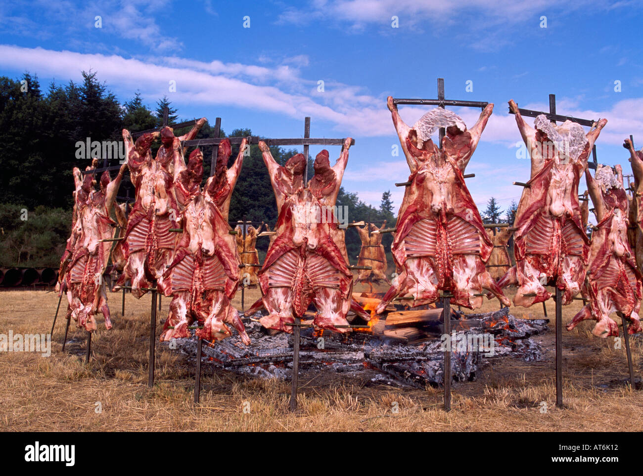 saturna island lamb barbecue southern gulf islands bc british