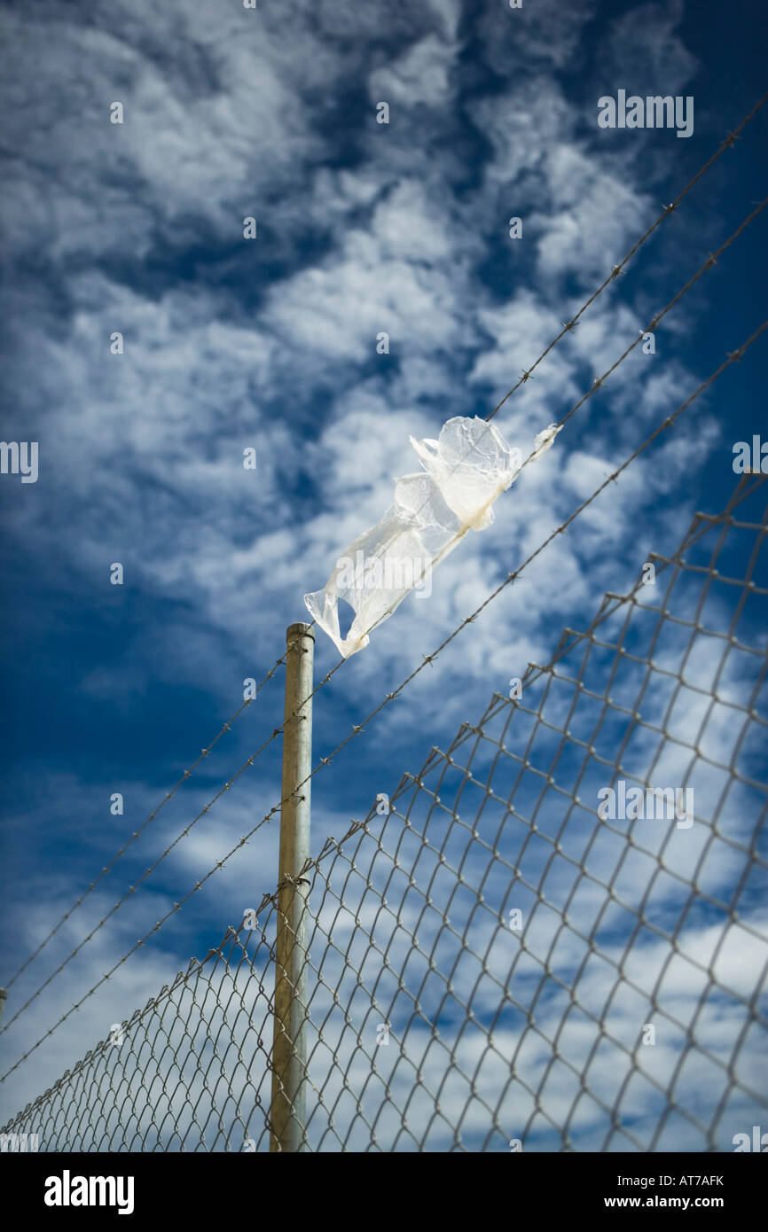 Plastic bag on barbed wire - Stock Image