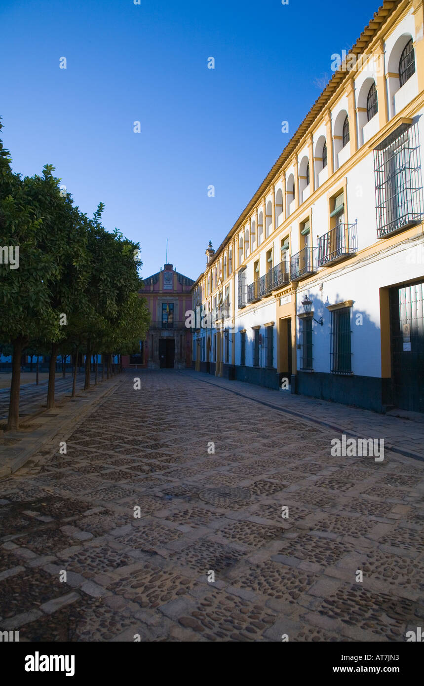 A View Of White And Yellow Buildings In The Patio De Las Banderas In