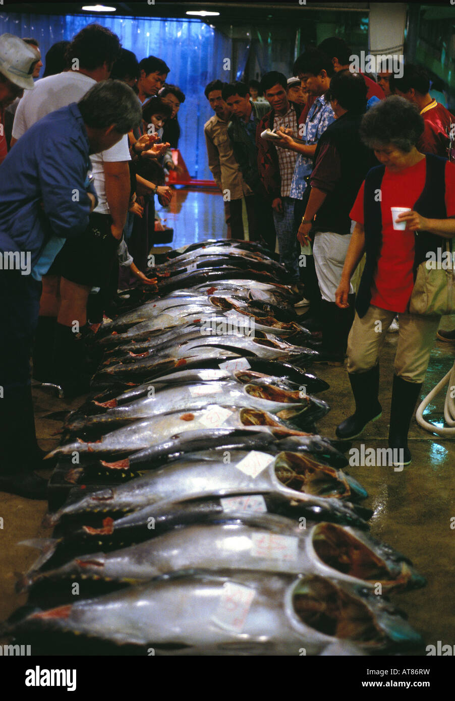 fish buyers at the United Fishing Agency's daily fish auction near