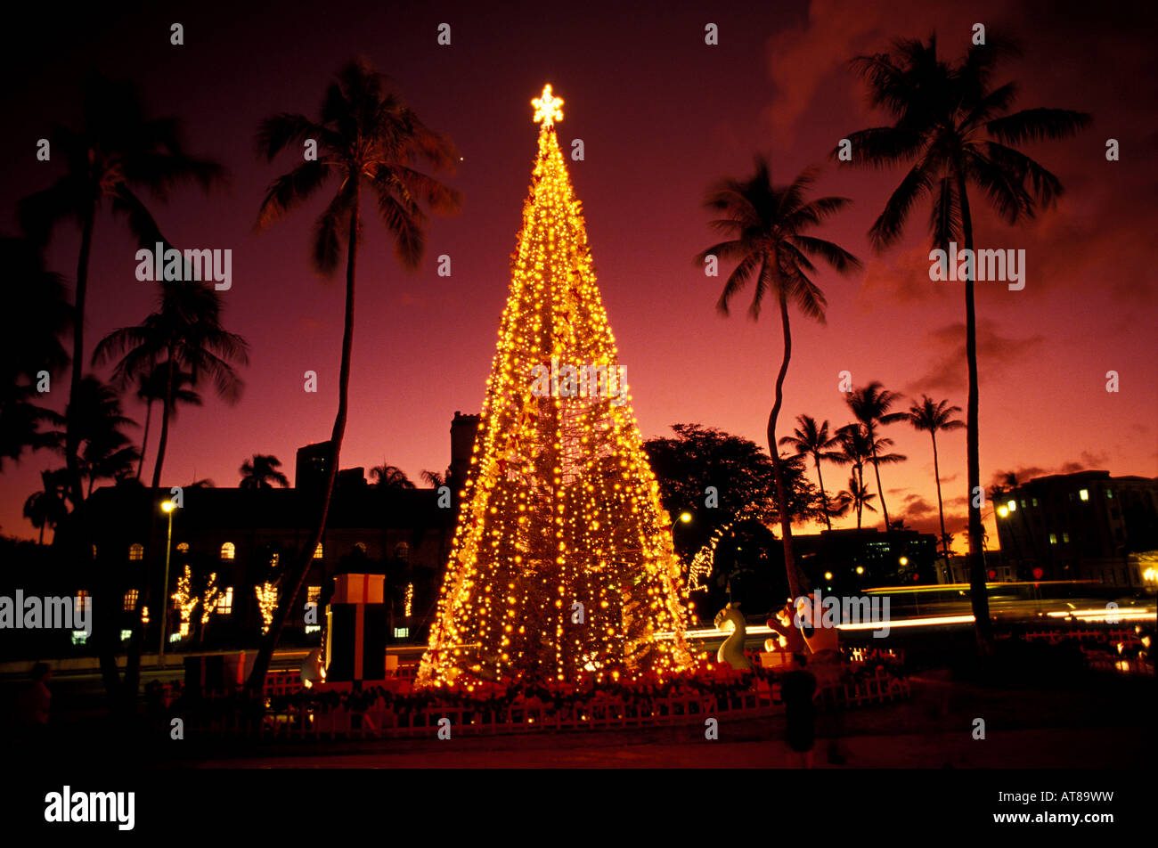 Honolulu Hale Christmas 2021 Christmas Tree At Twilight At Honolulu Hale With Pink Sky And Palm Trees Stock Photo Alamy