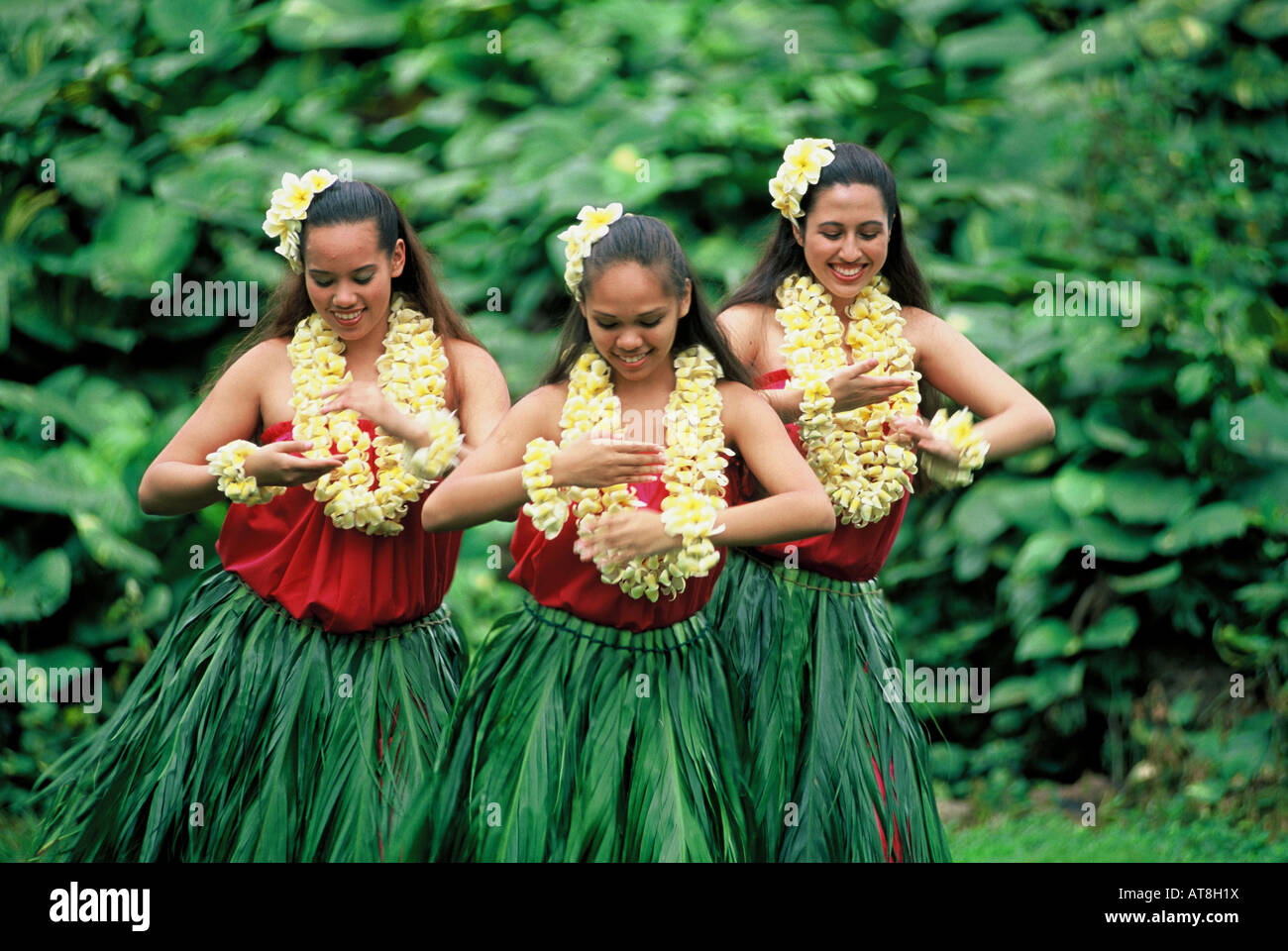 Three Hula Dancers in ti leaf skirts and yellow plumeria leis performing an Auana style hula - Stock Image