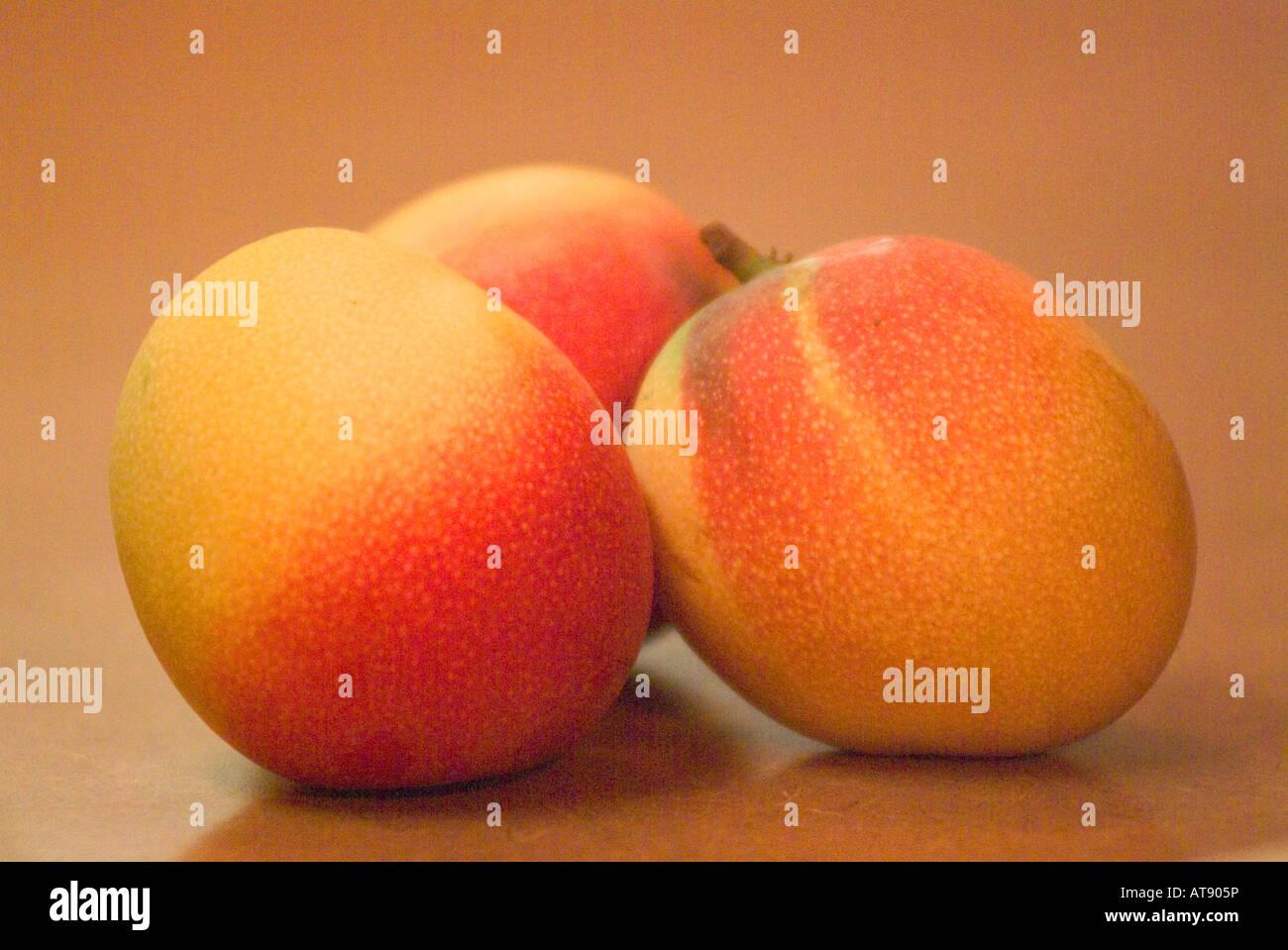 Three ripe mangos sitting on countertop Stock Photo