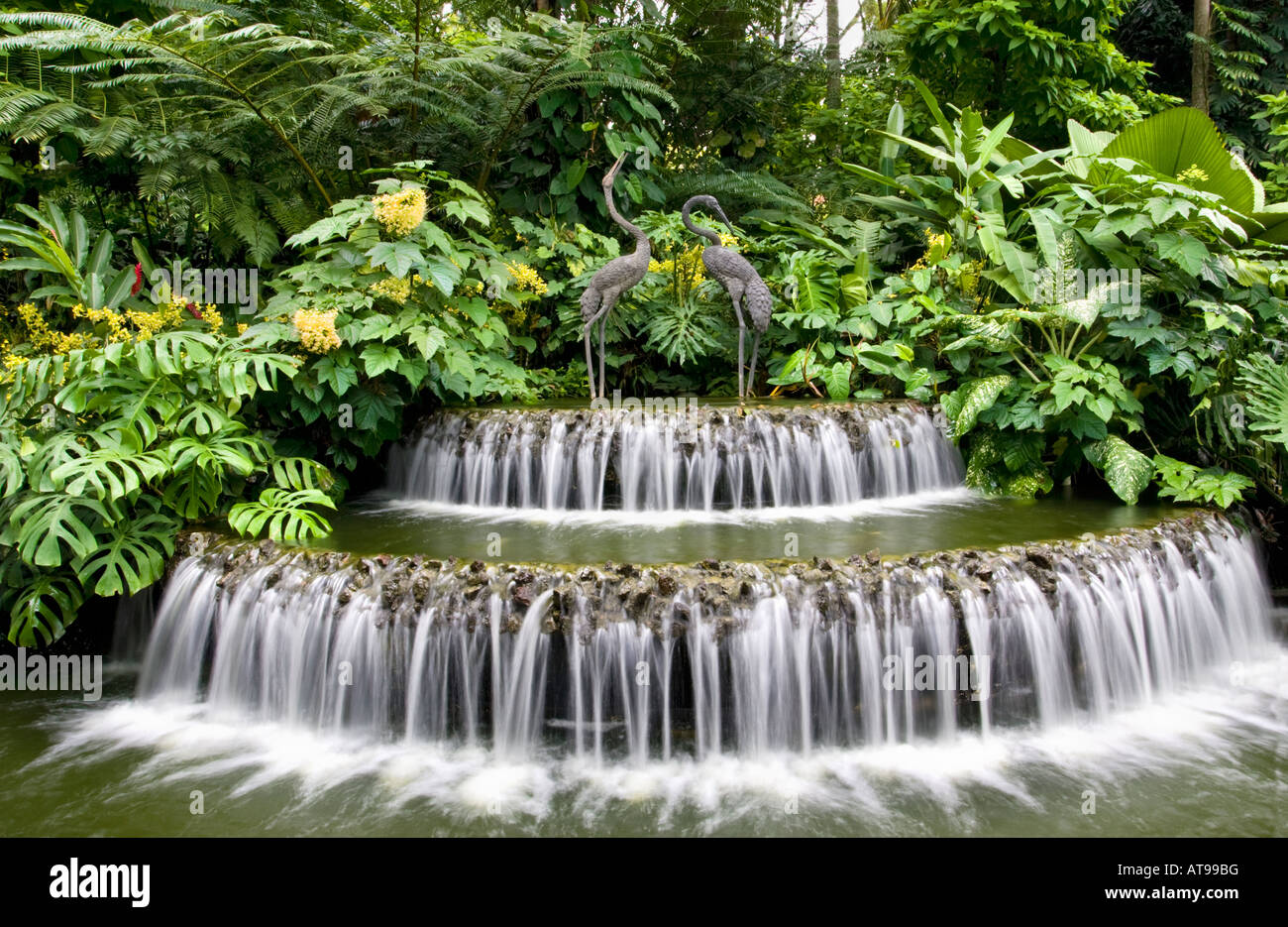 Waterfall Singapore Botanic Gardens