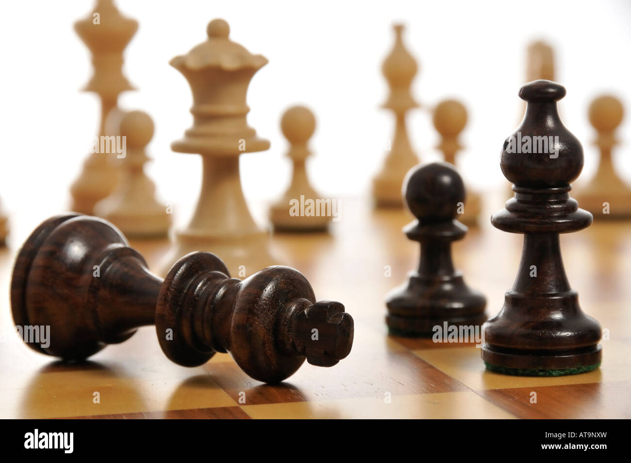 The black king surrendering on a chess board - Stock Image