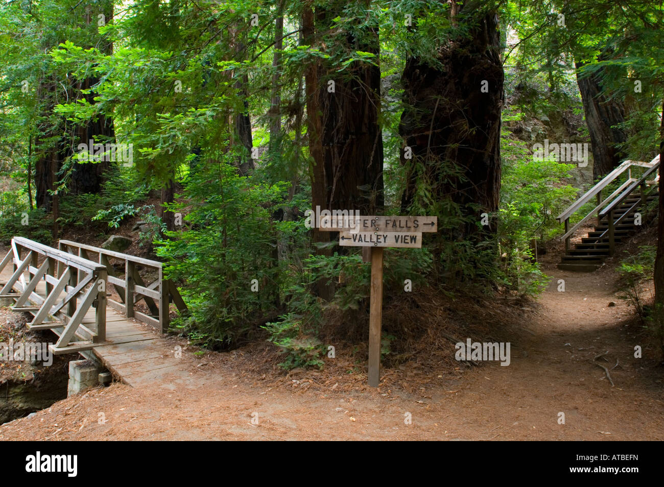 hiking trail guide signs at pfeiffer big sur state park monterey