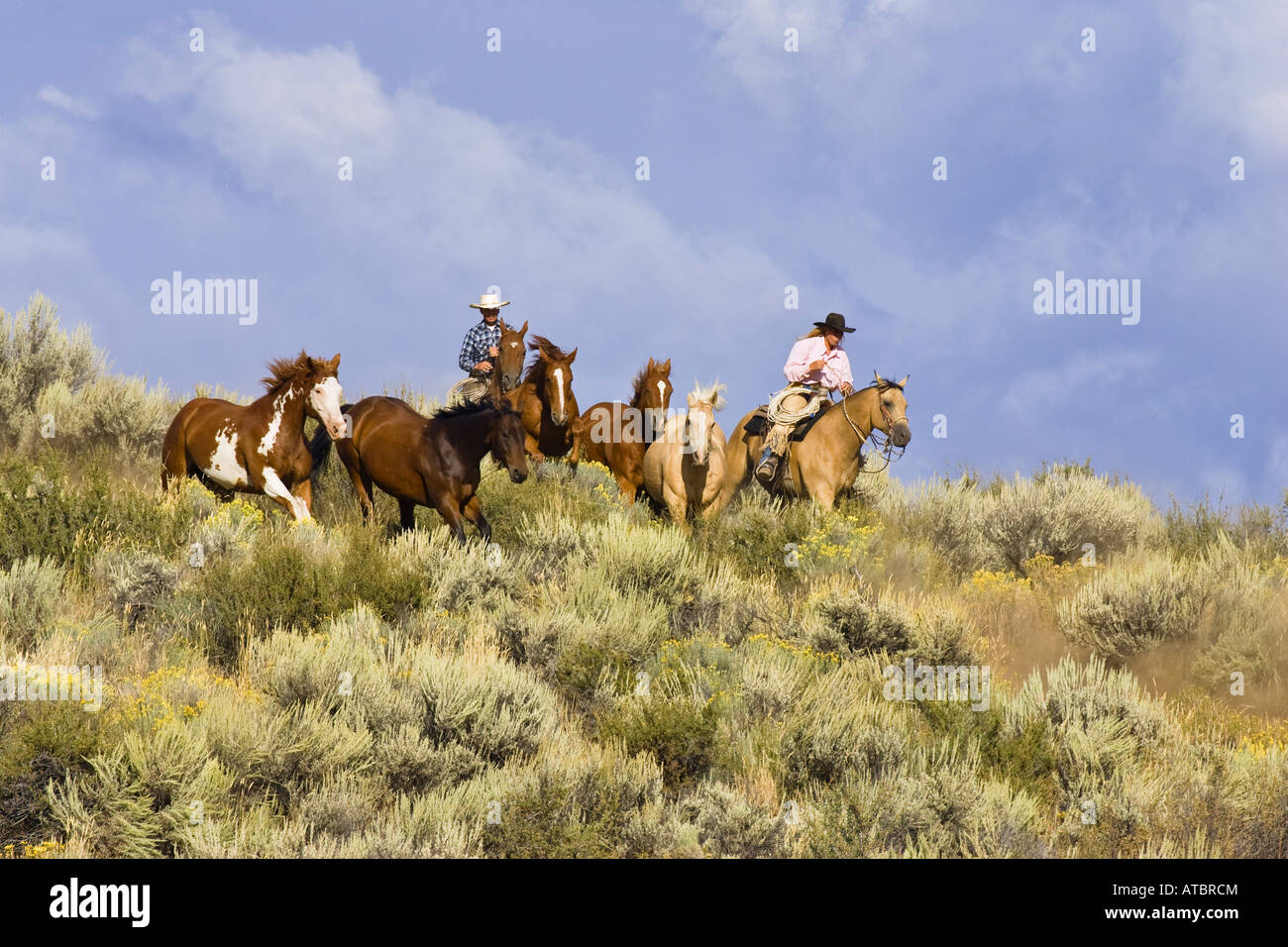 cowgirl and cowboy with horses, USA, Oregon Stock Photo