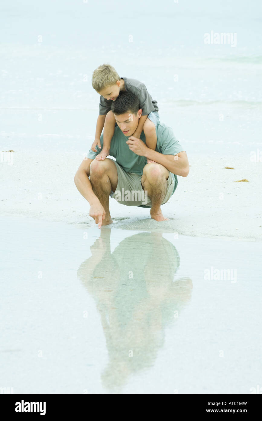 Man crouching at the beach, holding son on shoulders, pointing at shallow water Stock Photo