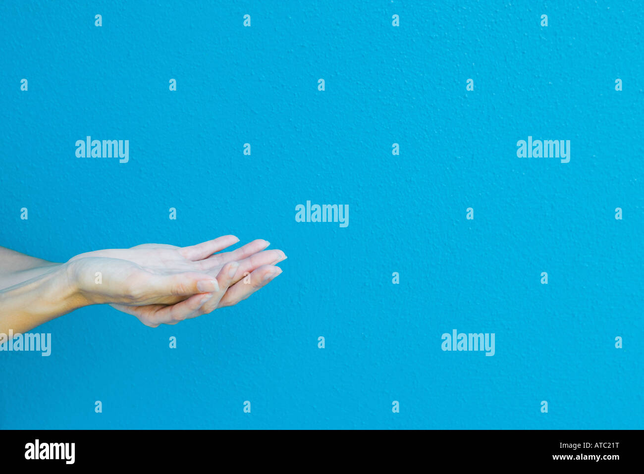 Cupped hands in front of blue wall, cropped view - Stock Image