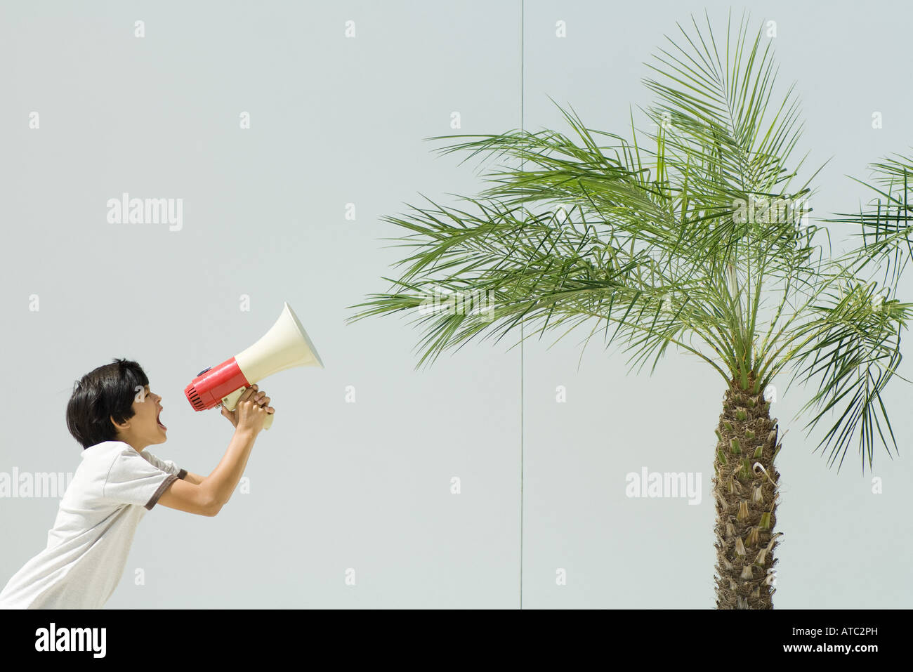 Boy yelling at palm tree with megaphone - Stock Image