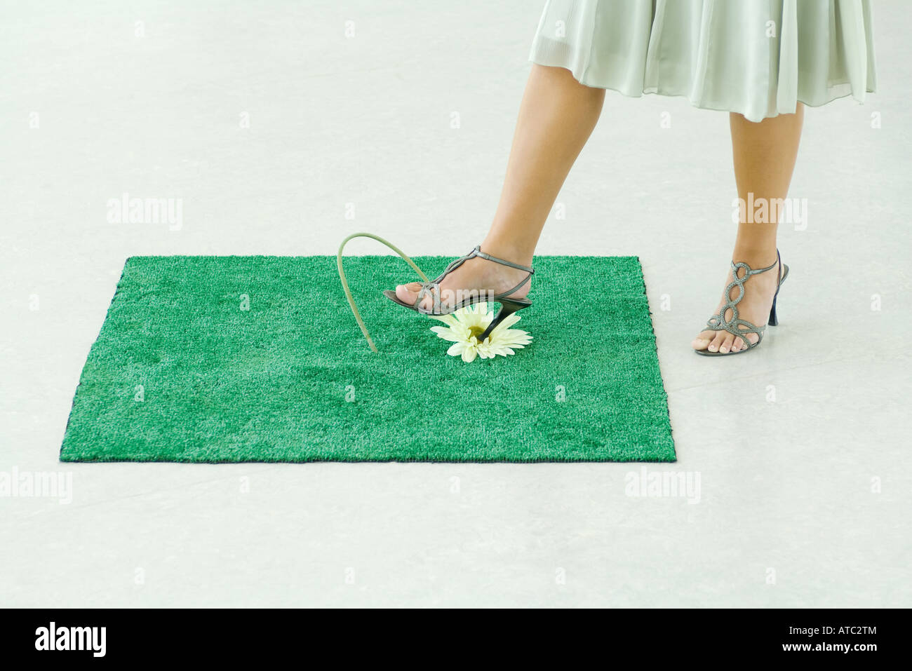 Woman sticking heel into flower on square of artificial turf, low section - Stock Image