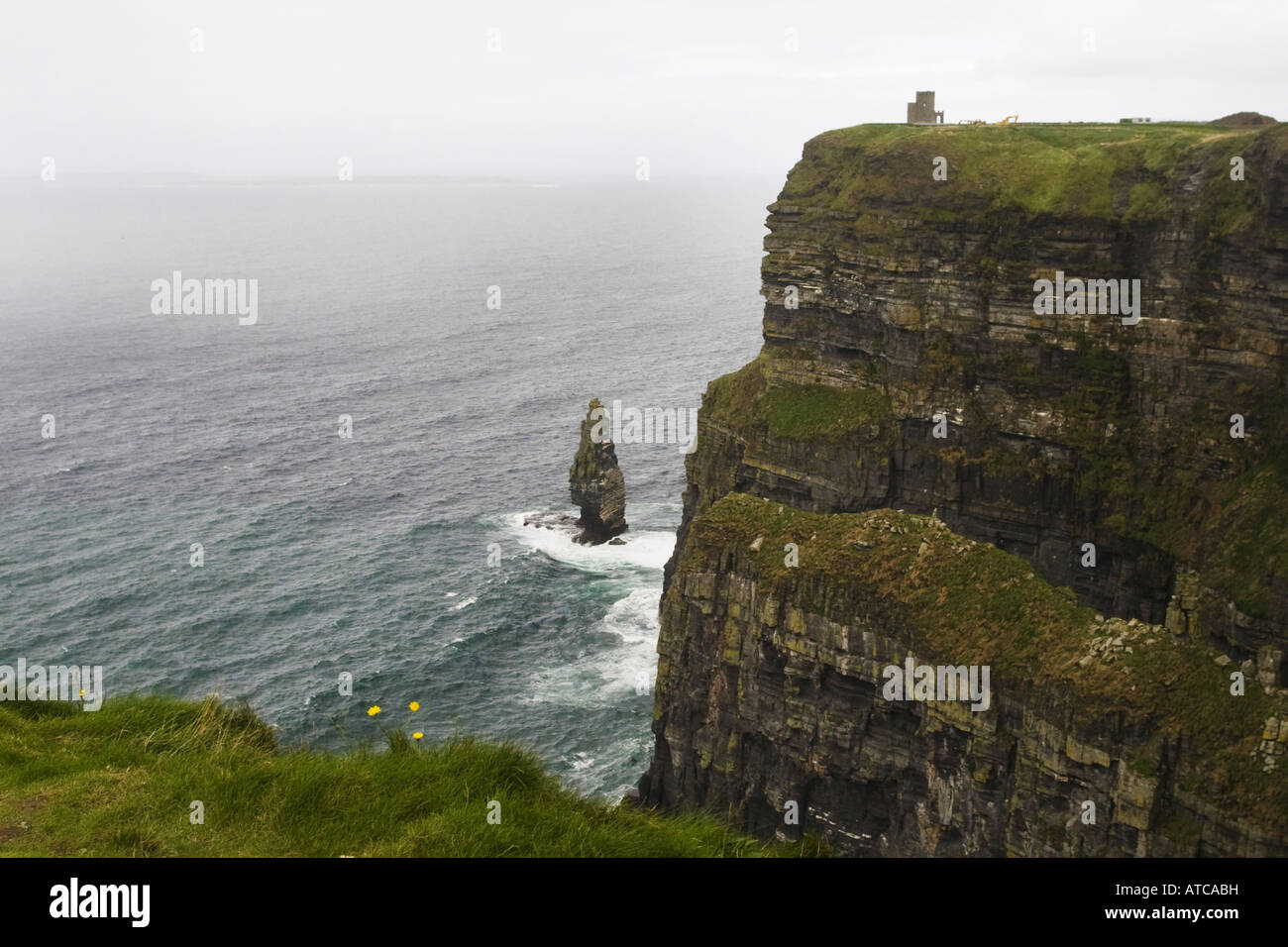 Cliffs of Moher, west coast of Ireland, Ireland, Clarens - Stock Image