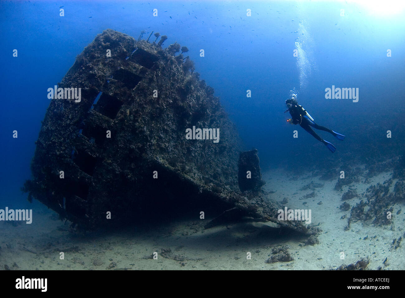 Diver and Carnatic shipwreck Red Sea, underwater, scuba, diving, sea, ocean, blue water, deep, ship, wreck, female - Stock Image