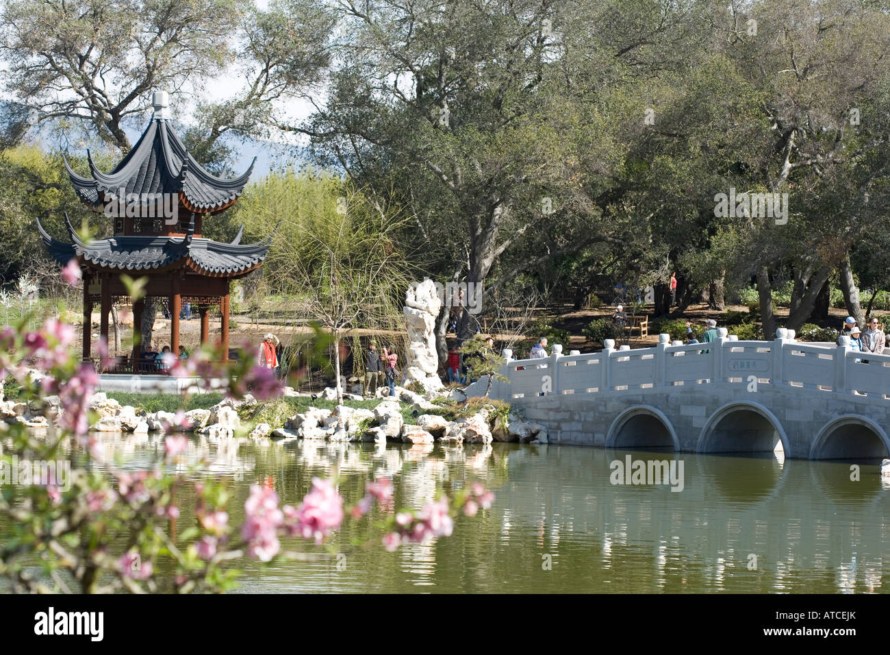 Chinese Garden At The Huntington Gardens Pasadena California Usa