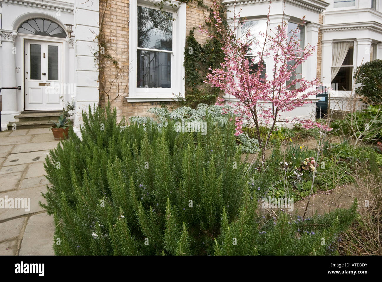 Town formal garden Victorian house - Stock Image