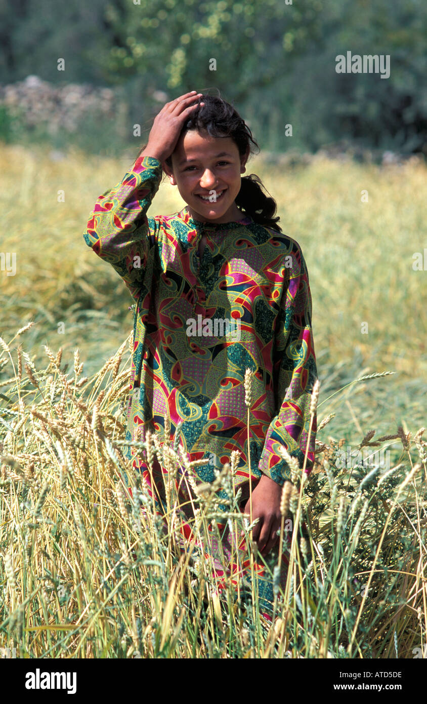 Young Pakistani woman in her fields of barley Sust near the Chinese border N Pakistan - Stock Image