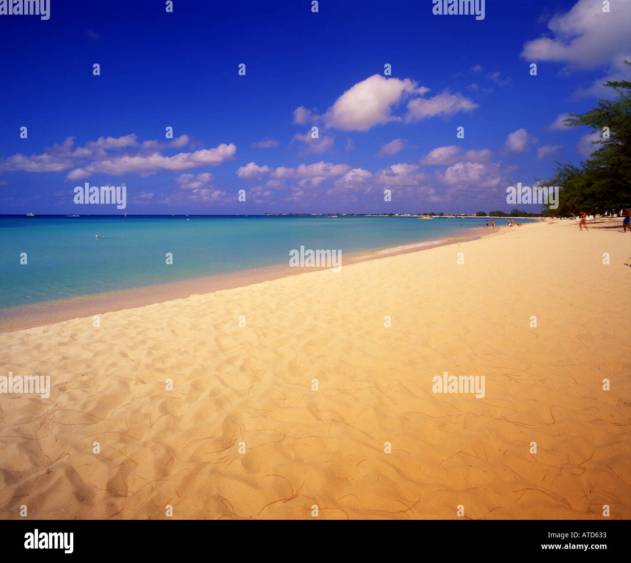 Seven Mile Beach on Grand Cayman Island in the Caribbean - Stock Image