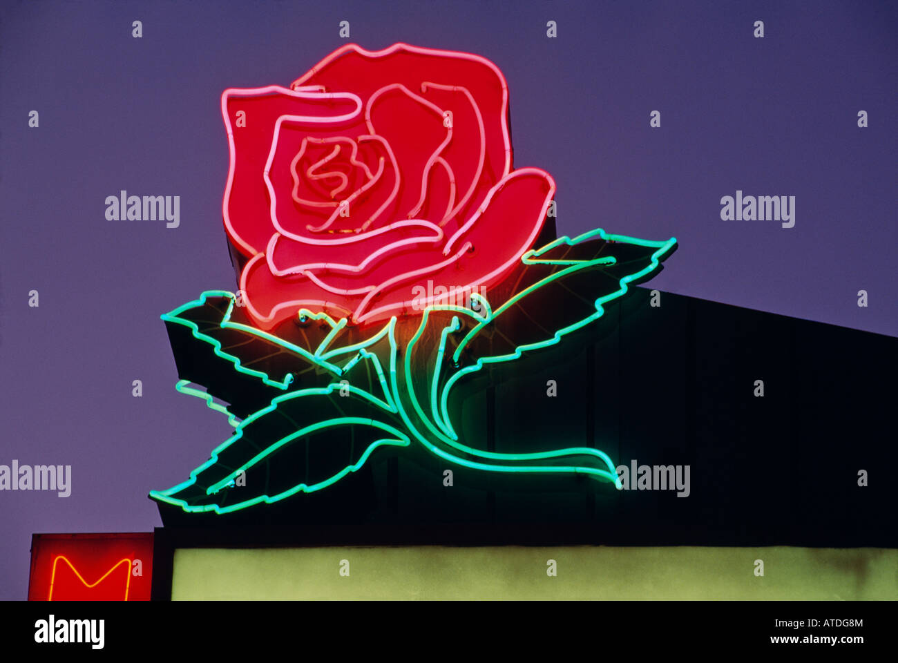 Detail Of Neon Sign Of Rose Manor Motel In Portland Oregon Stock