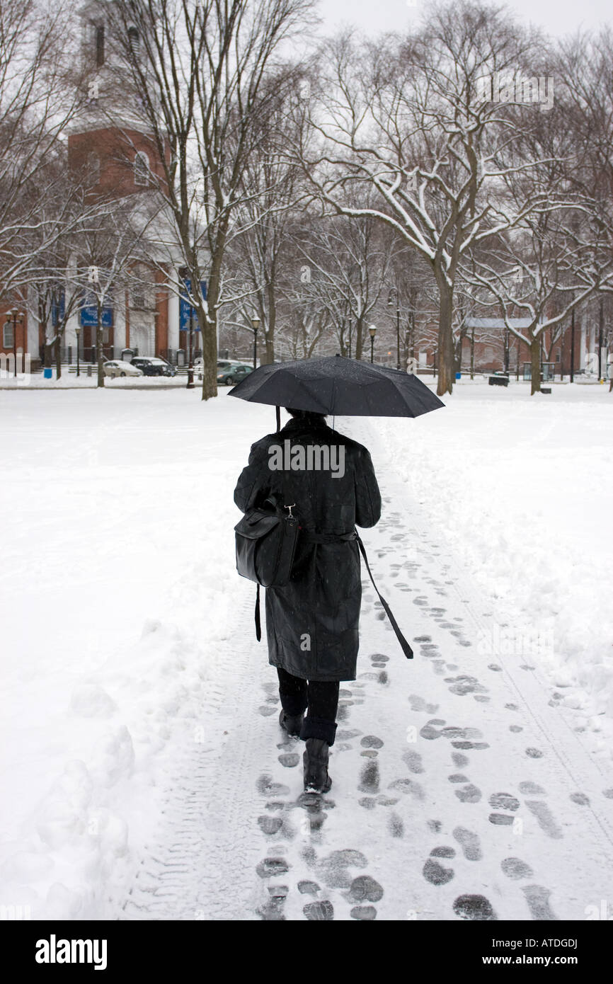 Businessman walking with umbrella through the snow in New Haven, Connecticut USA BHZ - Stock Image