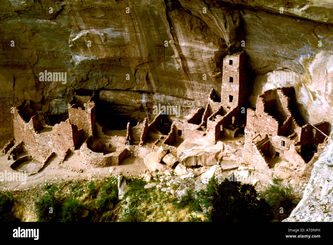 CO Colorado Mesa Verde National Park Cliff Palace Saguaro Tower anasazi cliff dwellers ancient adobe - Stock Image