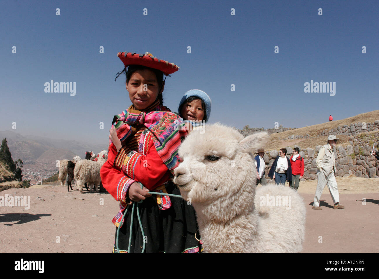 A young Peruivan girl with her baby cousin and alpaca atop the Incan ruins overlooking the city of Cusco Peru - Stock Image
