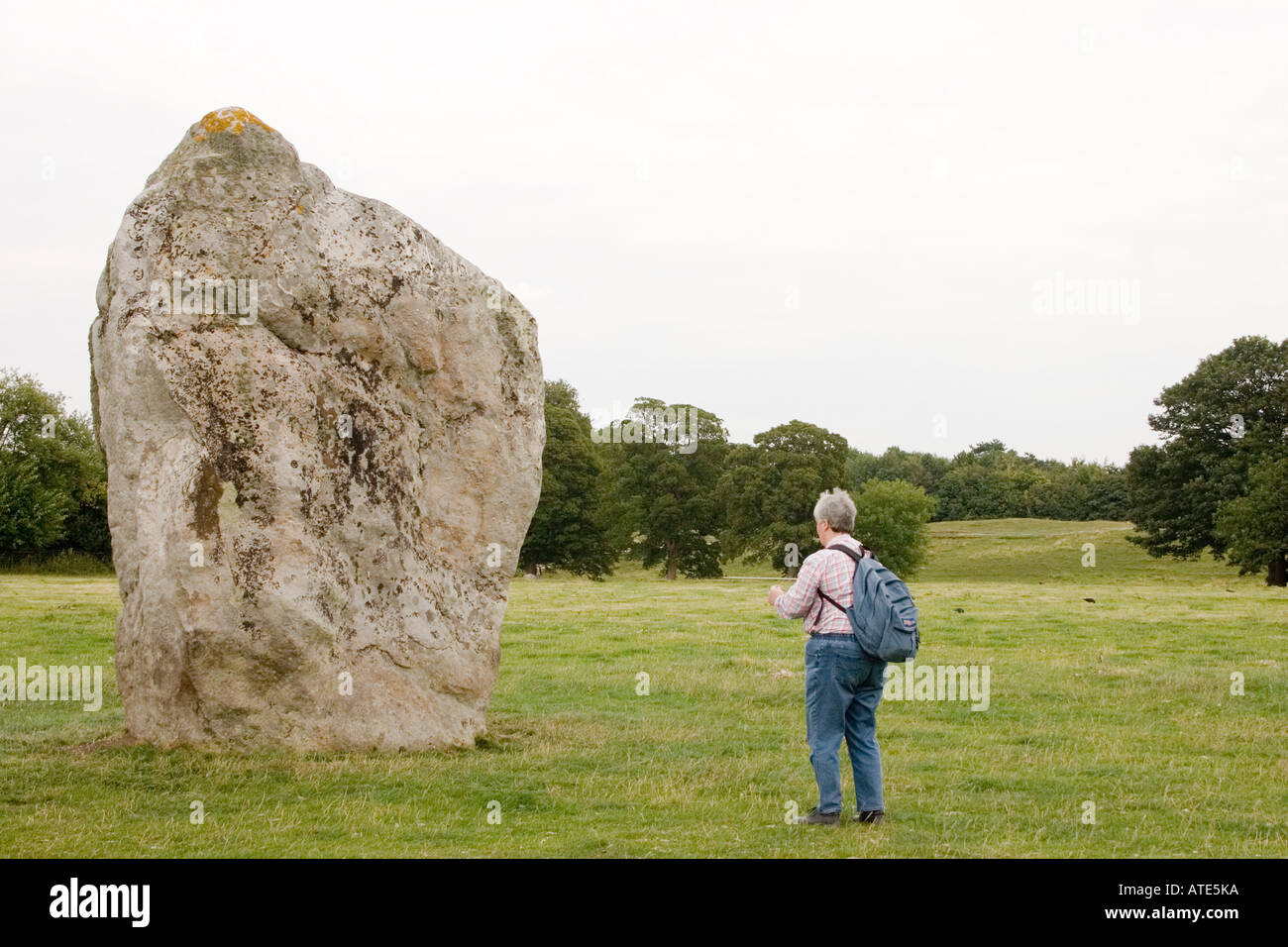 Visitor dowsing a stone in the Avebury circle - Stock Image