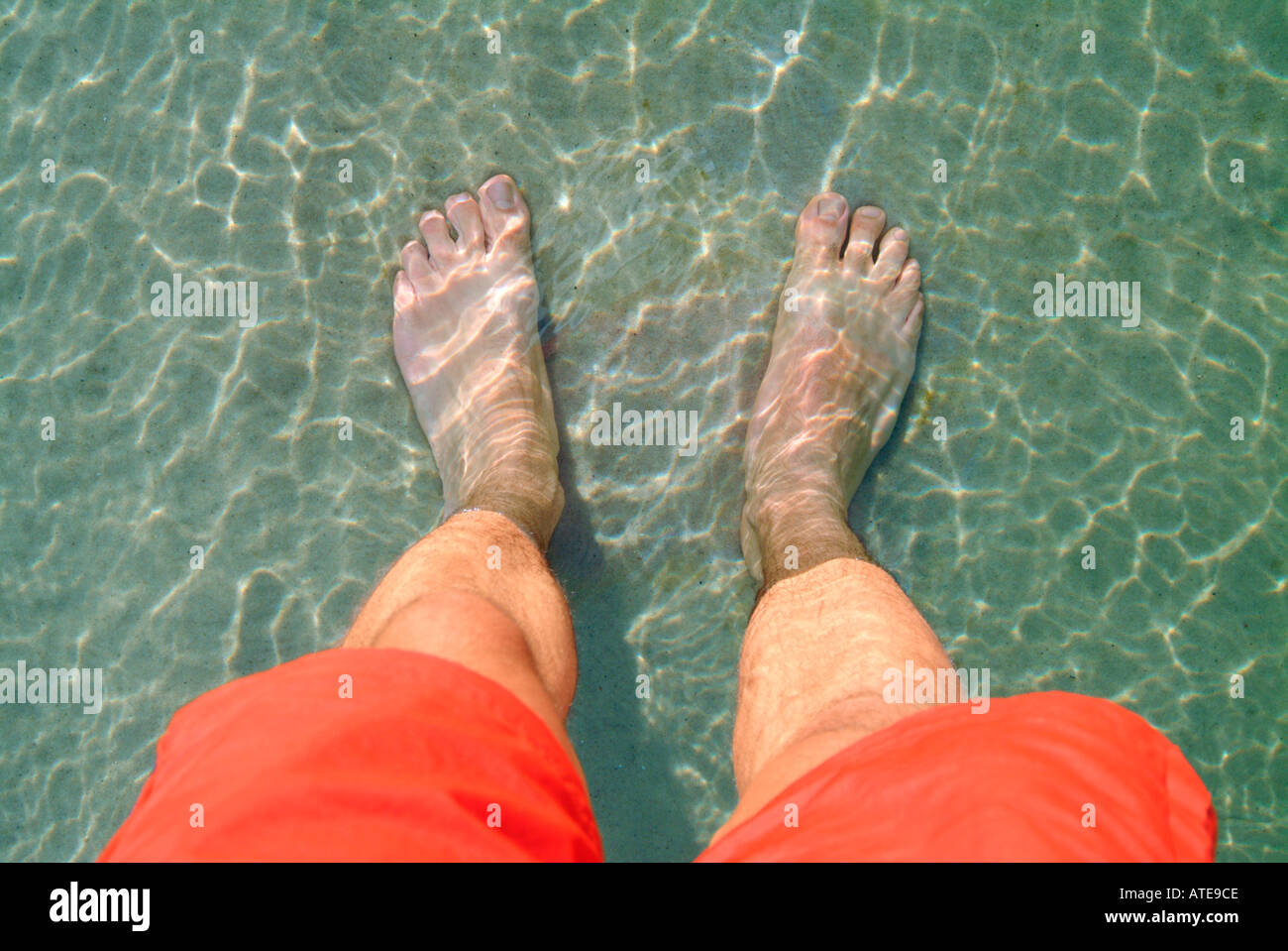 a bather s feet in shallow sea water and sand - Stock Image