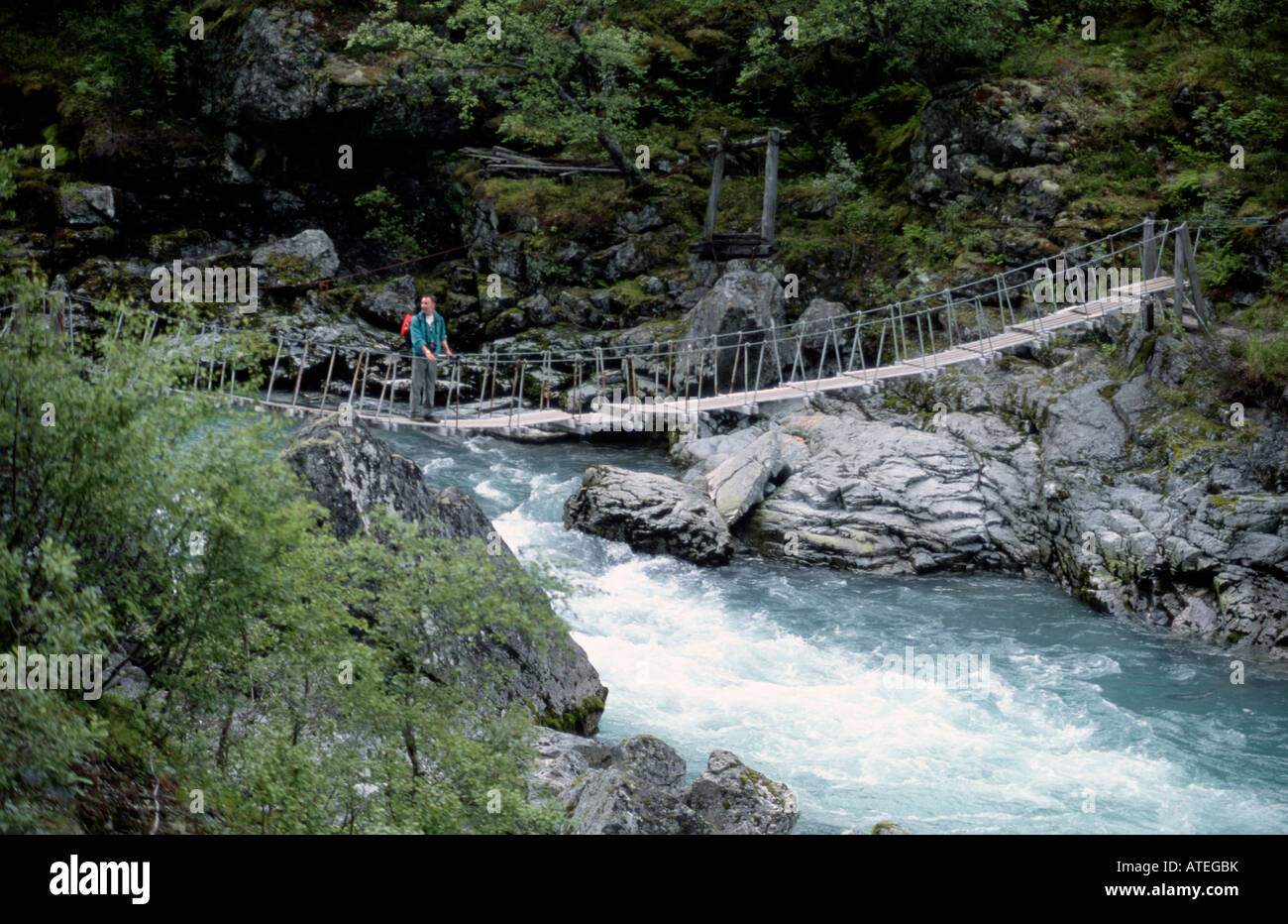 Suspension Bridge - Stock Image