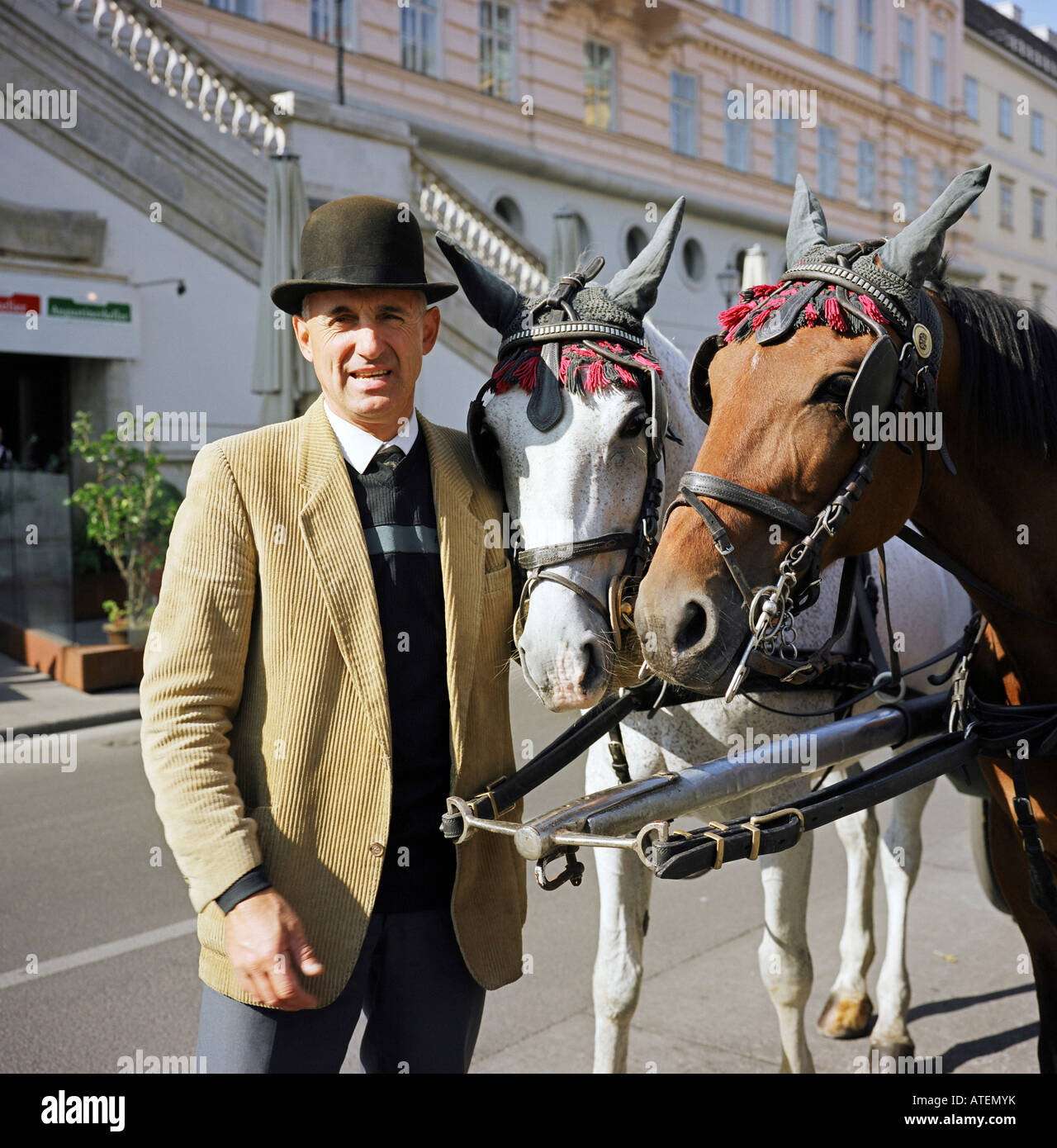 Coachman and his horses, Vienna, Austria - Stock Image