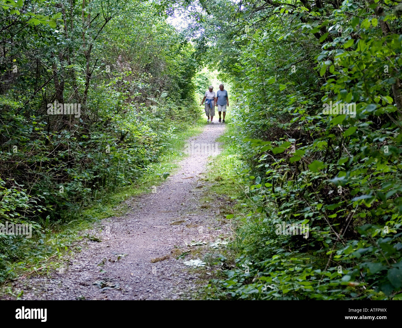 Women on foot path - Stock Image