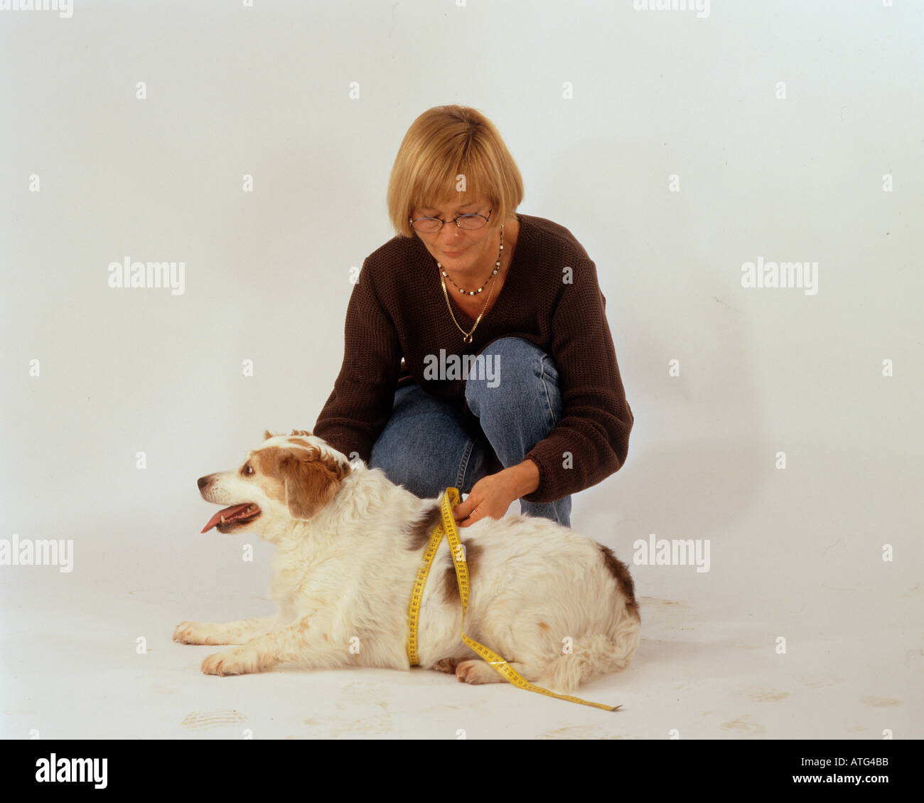 woman and dog: abdominal measurement - Stock Image