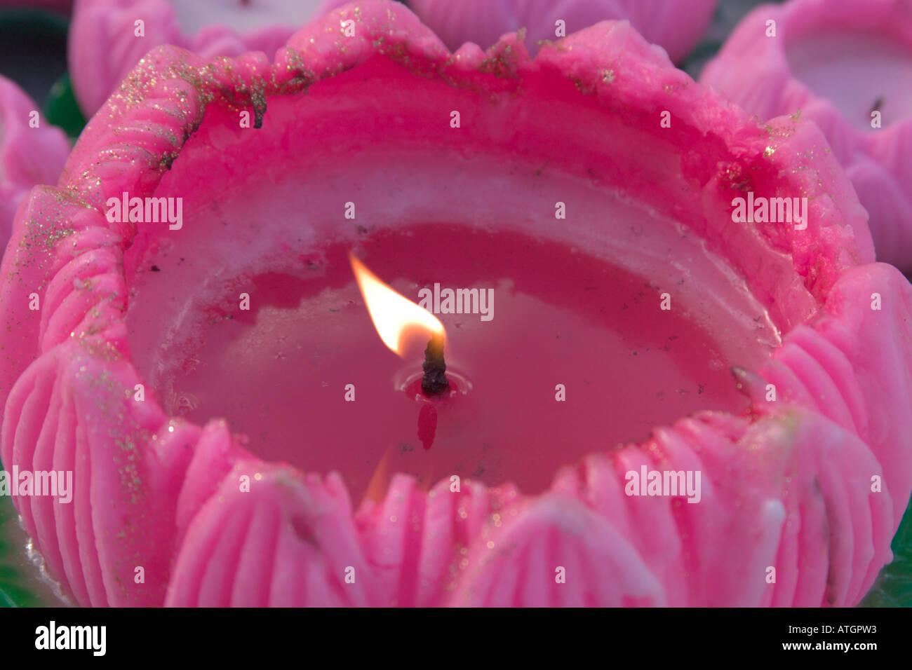 Buddhist Lotus Flower Stock Photos Buddhist Lotus Flower Stock