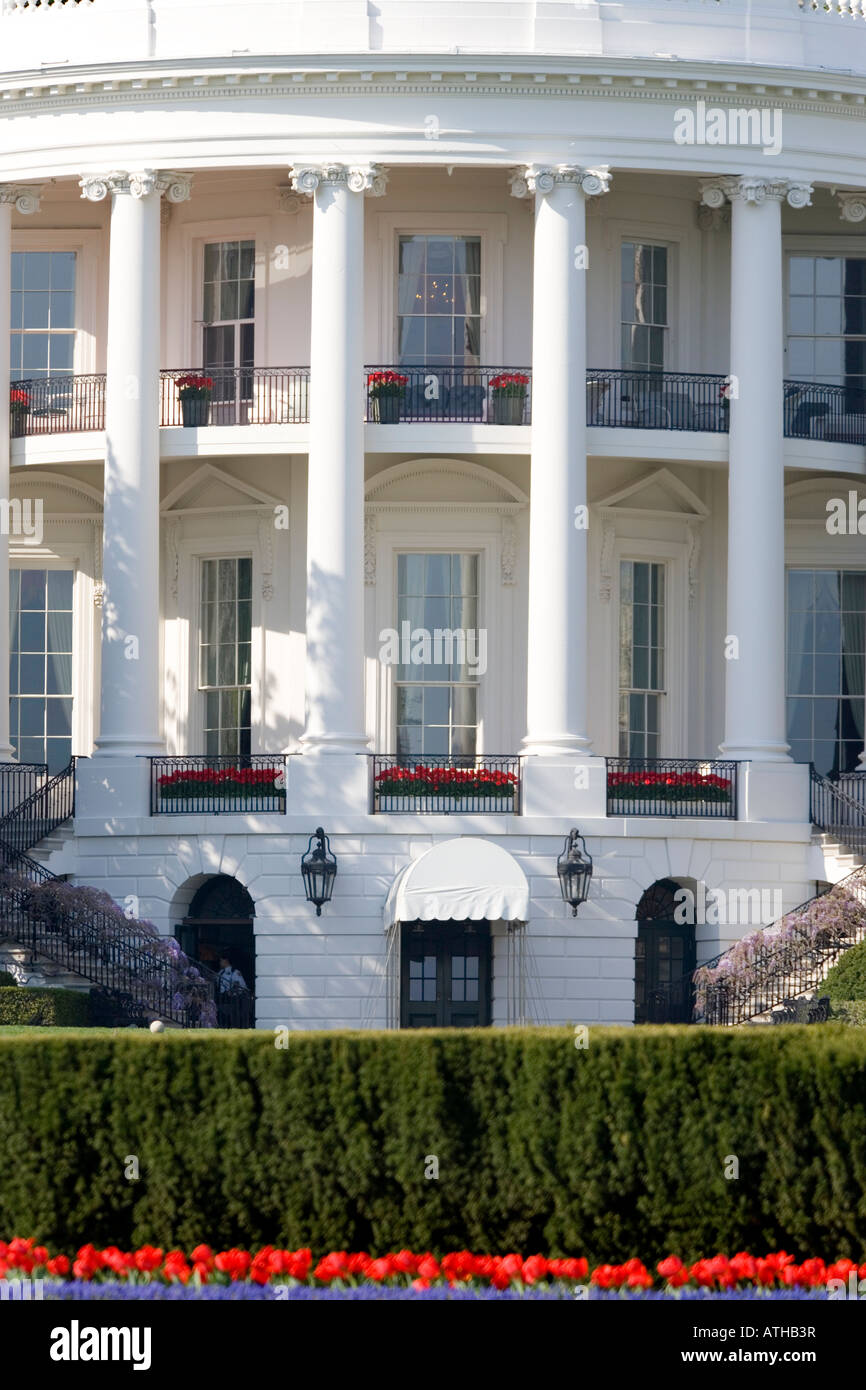 Close up view of the rear of the White House, Washington DC, with the Truman Balcony in Springtime with Tulips and - Stock Image