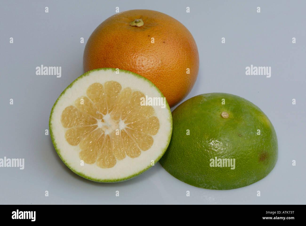 Grapefruit / Pampelmuse Stock Photo