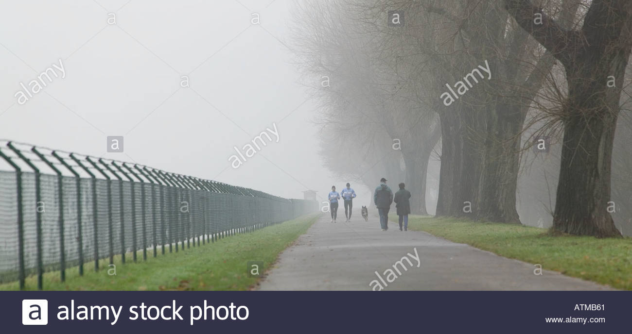 landscape fence barbed wire path joggers people walking sport trees ...