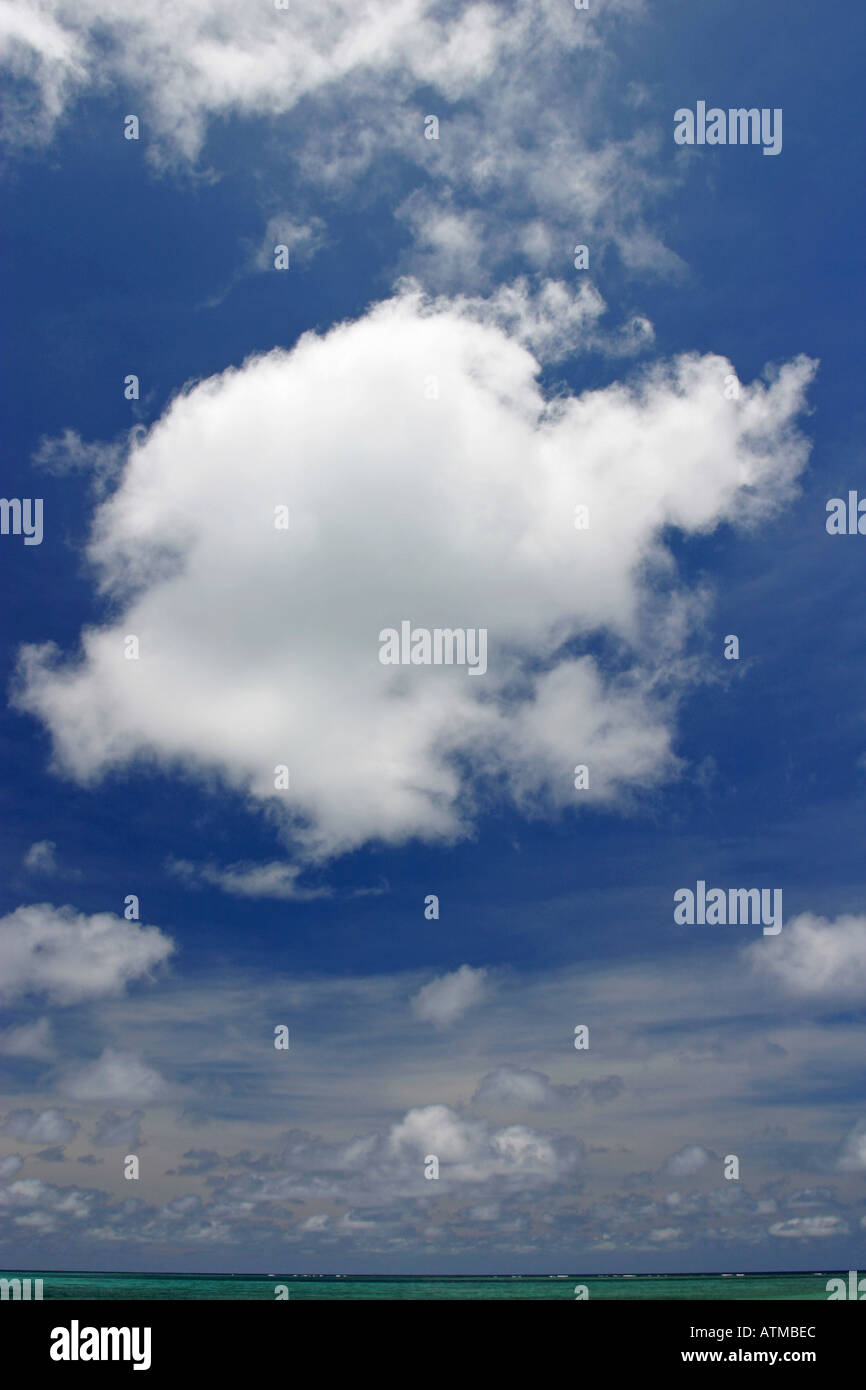 A single white fluffy cotton wool cumulus cloud contrasts with a bright vivid deep blue sky background - Stock Image