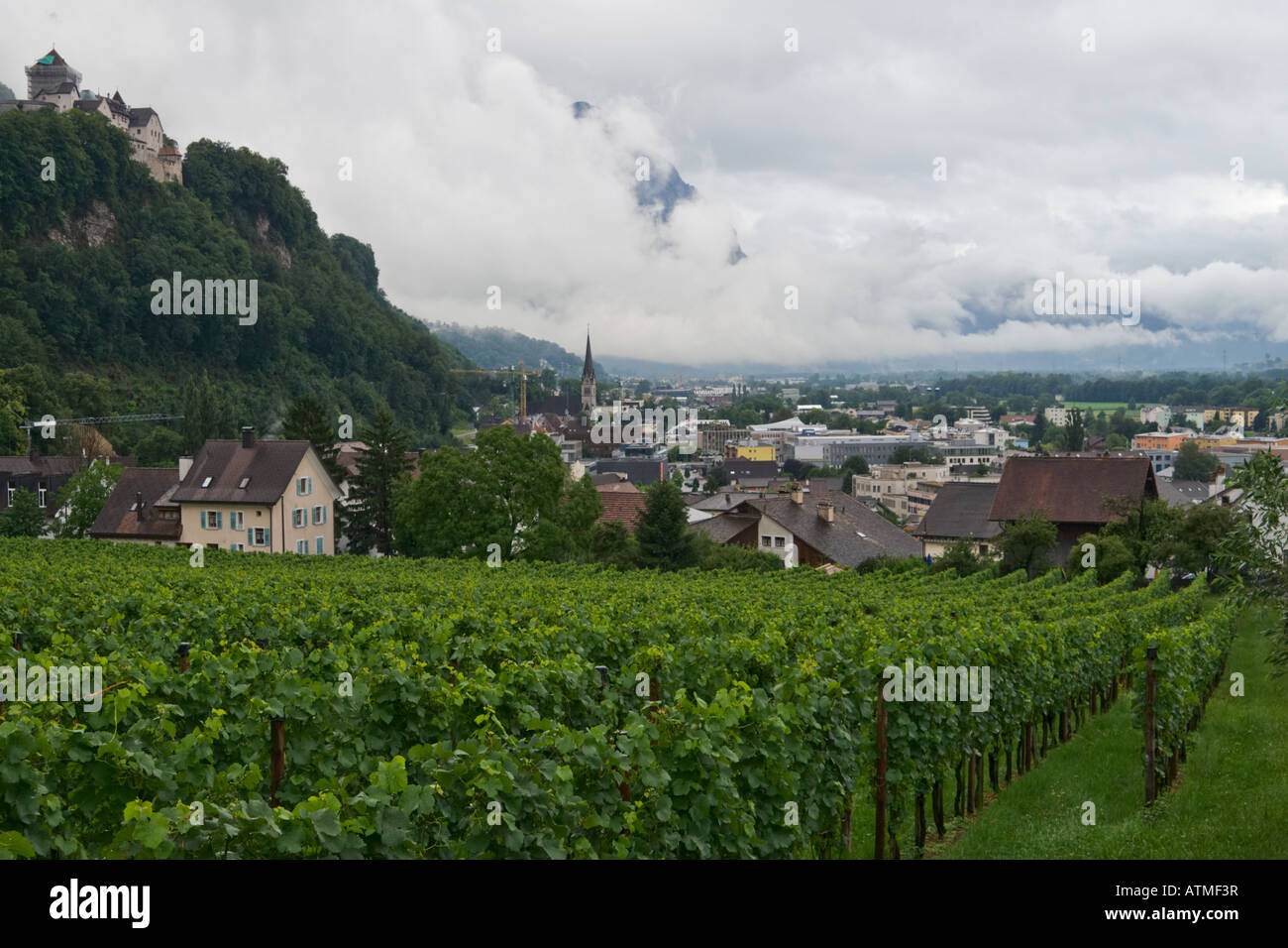 View At Vaduz Capital Of Principality Liechtenstein And Vineyards Close To The City