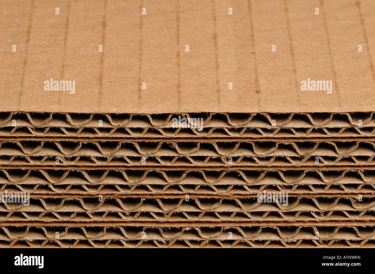 sheets of corrugated cardboard - Stock Image