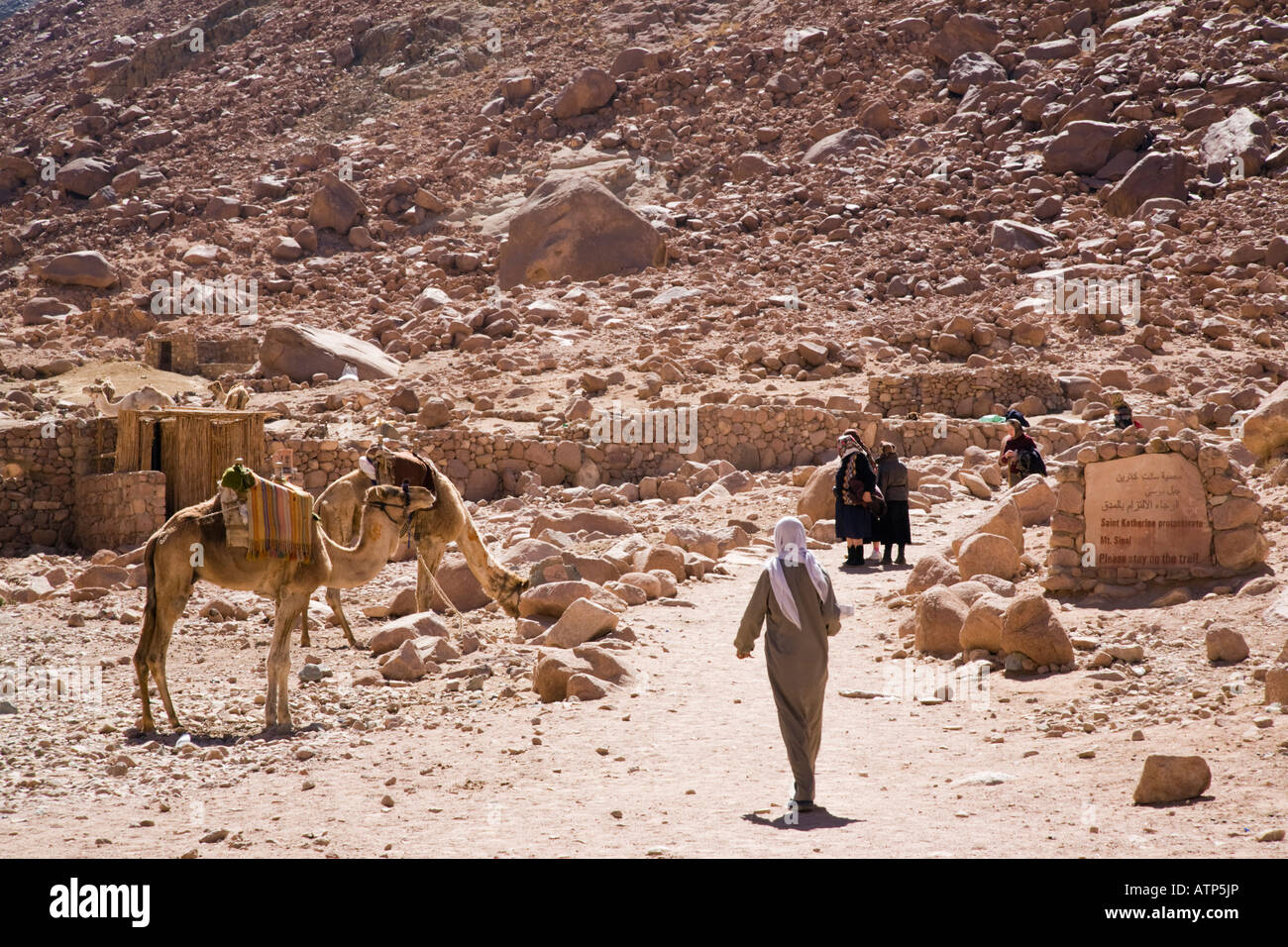 Bedouin people and camels on trail with sign to Mount Sinai
