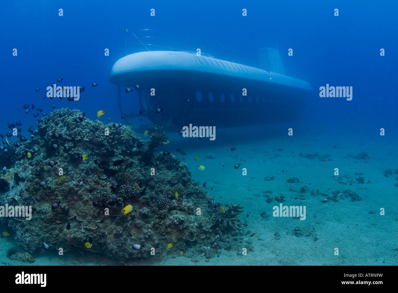 This Atlantis submarine is exploring a small reef off the coast of Maui, Hawaii. - Stock Image