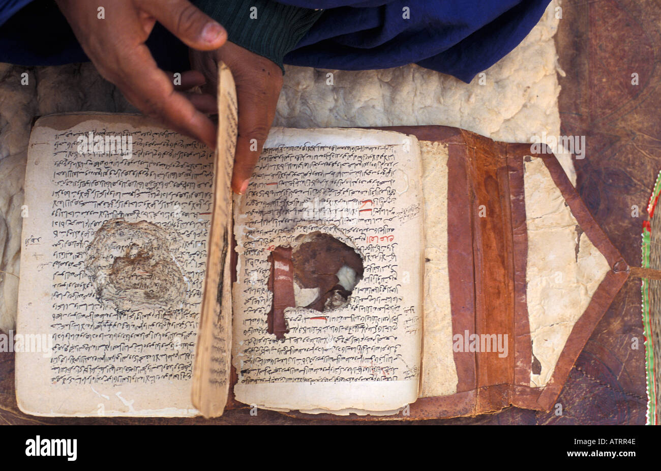 Hundreds years old hand written books eaten by rats in Chinguetti Library in Mauritania - Stock Image