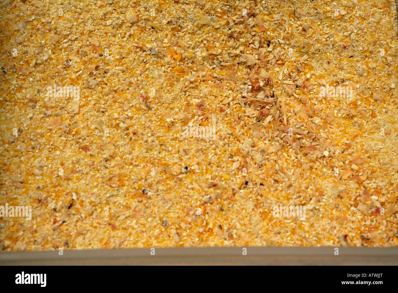 Cracked yellow corn (maize) for animal feed Stock Photo