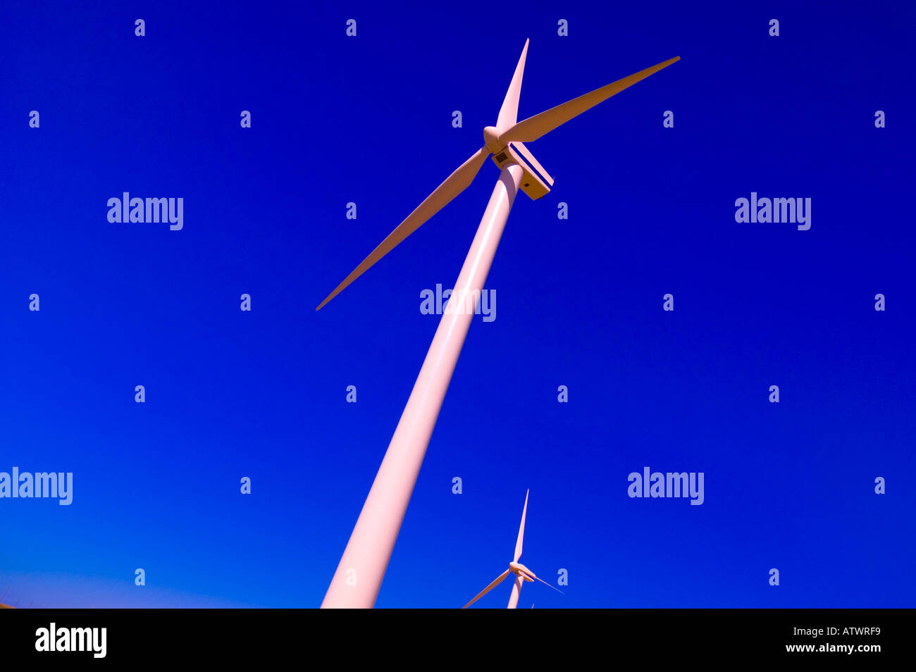 Environmental Issues - Stock Image